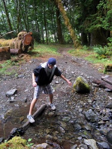 hoh river trail stream crossing