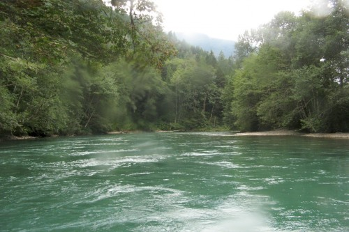 skagit river green