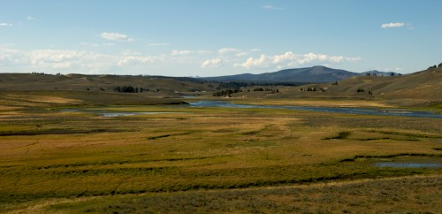 yellowstone_hayden-valley