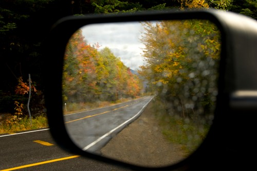 new-hampshire_side-mirror-leaves