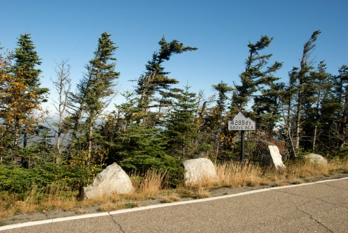 whiteface_elevation-sign