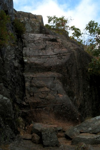 acadia_trail-ladder