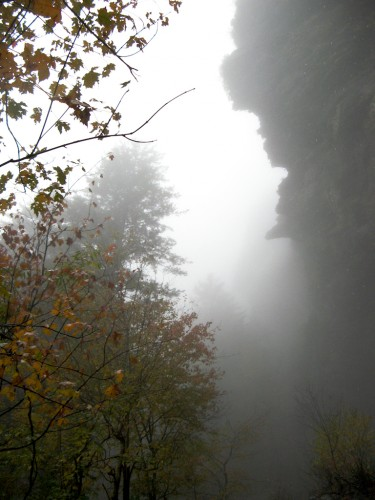 alum-cave_cliff-in-mist