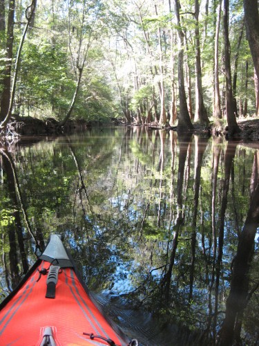 congaree_kayak-point