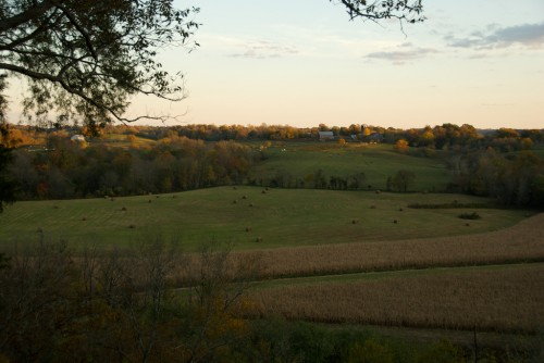 natchez-trace_tenn-farms
