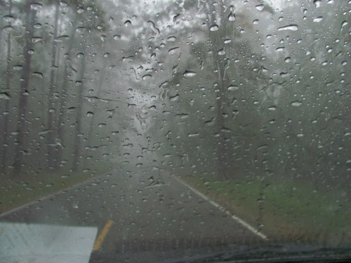 natchez-trace_windshield