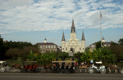 new-orleans_jackson-sq-carriages